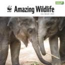 Image for WWF Amazing Wildlife Square Wall Calendar 2022