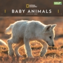 Image for Baby Animals National Geographic Square Wall Calendar 2022