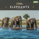 Image for Elephants National Geographic Square Wall Calendar 2022