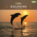 Image for Dolphins National Geographic Square Wall Calendar 2022