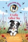Image for Jasmine Green Rescues: A Collie Called Sky