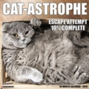 Image for Cat-Astrophe 2019 Wall Calendar