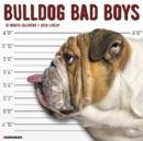 Image for Bulldog Bad Boys 2020 Wall Calendar (Dog Breed Calendar)