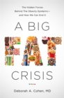 Image for A Big Fat Crisis : The Hidden Forces Behind the Obesity Epidemic-and How We Can End It