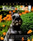 Image for The essential miniature schnauzer