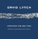 Image for Catching the Big Fish : Meditation, Consciousness and Creativity