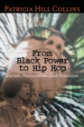 Image for From Black power to hip hop  : racism, nationalism, and feminism