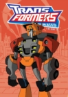 Image for Transformers animated.Vol. 9