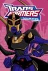 Image for Transformers animatedVolume 11
