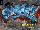 Image for Graff  : the art & technique of graffiti