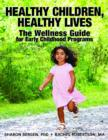 Image for Healthy Children, Healthy Lives : The Wellness Guide for Early Childhood Progams