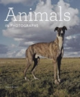 Image for Animals in photographs