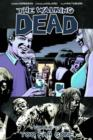 Image for The walking deadVolume 13