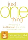 Image for Just one thing  : developing a Buddha brain one simple practice at a time