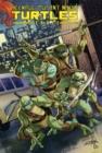 Image for Teenage Mutant Ninja Turtles Heroes Collection
