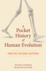 Image for A pocket history of human evolution  : how we became sapiens