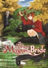 Image for The ancient magus' brideVol. 3 : Volume 3