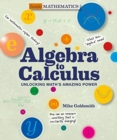 Image for Algebra to calculus  : unlocking math's amazing power
