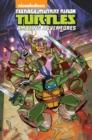 Image for Teenage Mutant Ninja Turtles  : amazing adventures