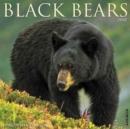 Image for Black Bears 2018 Wall Calendar