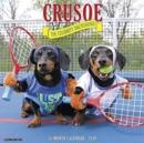 Image for Crusoe the Celebrity Dachshund 2019 Wall Calendar (Dog Breed Calendar)