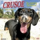 Image for Crusoe the Celebrity Dachshund 2020 Wall Calendar (Dog Breed Calendar)