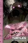 Image for Teenage Mutant Ninja TurtlesVolume 9