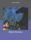 Image for Black Beauty : Large Print