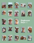 Image for Doghouse Days Yearbook V2