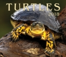 Image for Turtles 2018