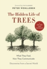 Image for The hidden life of trees  : what they feel, how they communicate - discoveries from a secret world