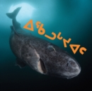 Image for All About Greenland Sharks : Inuktitut Edition