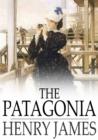 Image for Patagonia