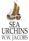 Image for Sea Urchins
