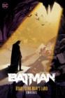 Image for Batman: Road to No Man's Land Omnibus