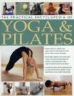 Image for The practical encyclopedia of yoga & Pilates