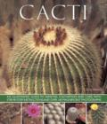 Image for Cacti  : an illustrated guide to varieties, cultivation and care, with step-by-step instructions and over 160 magnificent photographs
