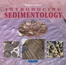 Image for Introducing sedimentology