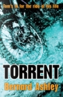 Image for Torrent