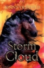 Image for Storm Cloud