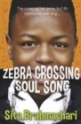 Image for Zebra crossing soul song