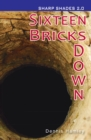Image for Sixteen bricks down