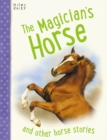Image for The magician's horse