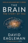 Image for The brain  : the story of you