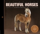 Image for Beautiful horses  : portraits of champion breeds preened to perfection