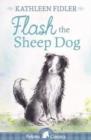 Image for Flash the sheep dog