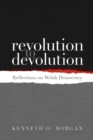 Image for Revolution to devolution  : reflections on Welsh democracy