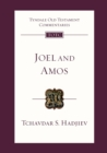 Image for Joel and Amos  : an introduction and commentary