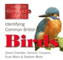 Image for Identifying common British birds