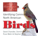 Image for Identifying common North American birds